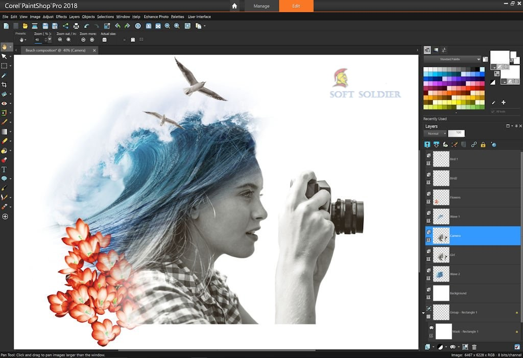 Portable Corel PaintShop Pro 2020