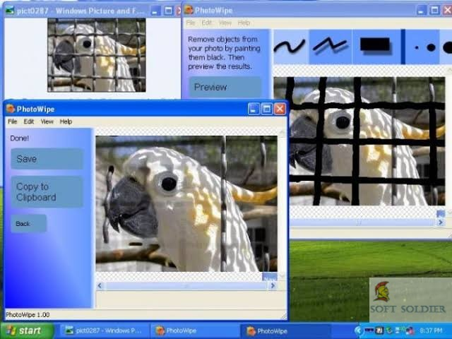 PicMonkey for Windows
