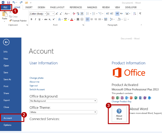 Microsoft Office 2013 Pro Plus October 2020 Free