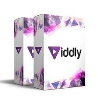Viddly YouTube Downloader Plus 2021 Free Download