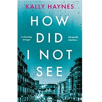How Did I Not See by Kally Haynes PDF Download