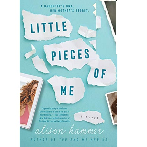 Little Pieces of Me by Alison Hammer ePub Download