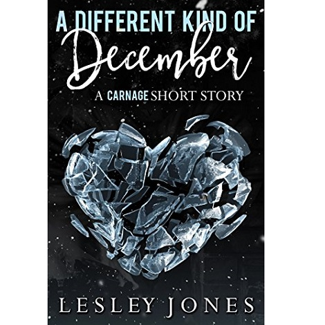 A Different Kind Of December by Lesley Jone ePub Download