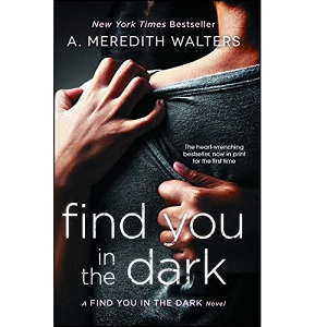 Find You in the Dark by A. Meredith Walters ePub Download