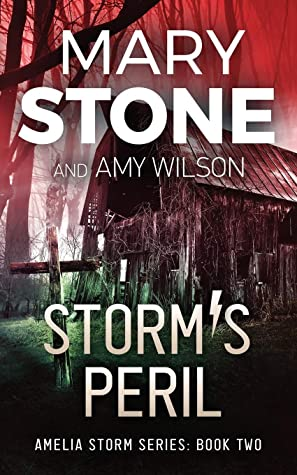 Storm's Peril by Mary Stone ePub Download