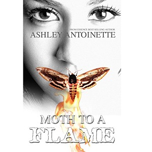 Moth to a Flame by Ashley Antoinette ePub Download