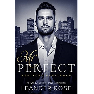 Mr. Perfect by Leander Rose ePub Download